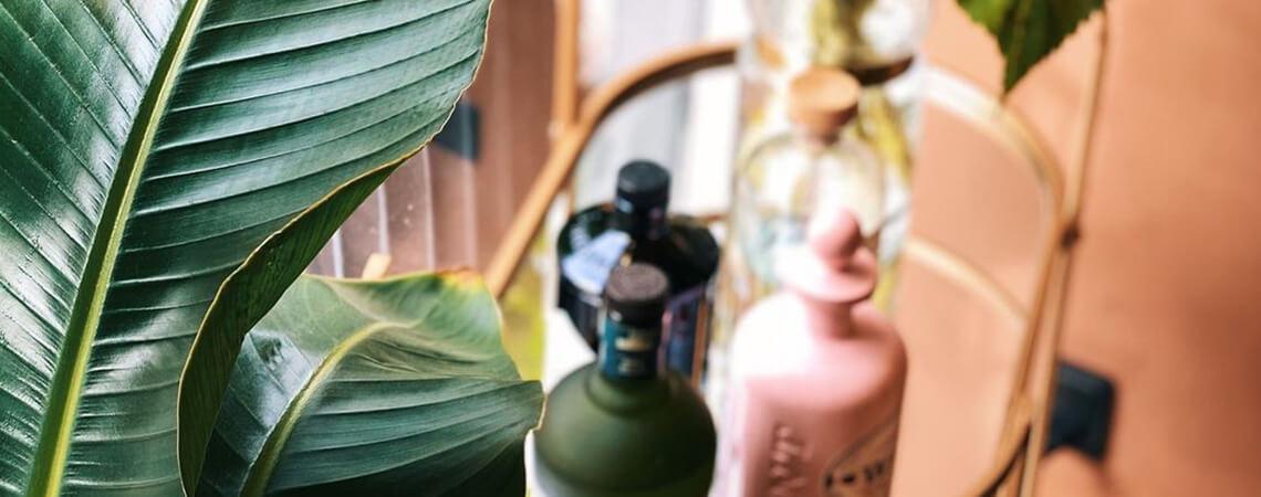 cocktails-og-plante-slider